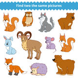 Find two the same pictures, vector set of forest animals Stock Image