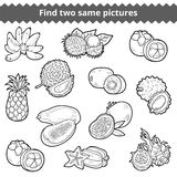 Find two same pictures. Vector set of fruits. Find two same pictures, education game for children. Vector set of fruits Royalty Free Stock Photography