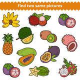 Find two same pictures. Vector set of fruits Royalty Free Stock Image