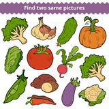 Find two same pictures. Vector set of vegetables. Find two same pictures, education game for children. Vector set of vegetables Stock Images