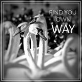 Find Your own Way. Swans on the lake. Royalty Free Stock Images
