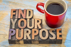 FInd your purpose concept in wood type Royalty Free Stock Photos
