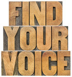 Find your voice. Motivation concept - isolated text in letterpress wood type Stock Images