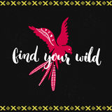 Find your wild. Brush lettering and hand drawn flying pink bird at dark background. Find your wild. Brush lettering and hand drawn flying pink bird at dark Stock Photos