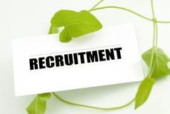 Finden eines Jobs in der Umwelterhaltung Lizenzfreie Stockfotos