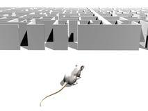 Finden Sie den Ausweg des Labyrinths Lizenzfreie Stockbilder