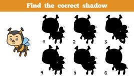 Finden Sie den korrekten Schatten (Biene) Stockfoto