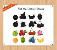 Finden Sie den korrekten Schatten, Bildungsspiel für Kinder - Früchte Stockbild