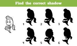 Finden Sie den korrekten Schatten (Fische) Lizenzfreies Stockbild