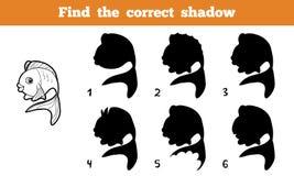 Finden Sie den korrekten Schatten (Fische) Lizenzfreie Stockfotografie
