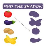 Finden Sie den rechten Schatten des Gemüses Tomatenzucchinikartoffeln vektor abbildung