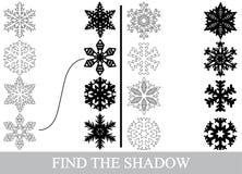 Finden Sie die korrekten Schattenschattenbilder von Schneeflocken stock abbildung
