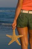 Finden von einem Seastar Lizenzfreie Stockfotos