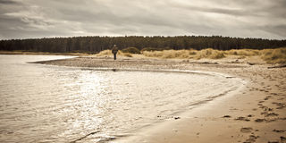 Findhorn Beach Royalty Free Stock Images