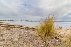 Findhorn, Scotland Royalty Free Stock Photos