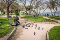Findikli-Park in Istanbul, die Türkei Lizenzfreies Stockbild