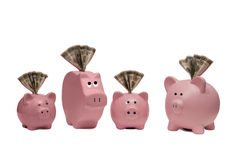 Finding Different Ways Of Saving. Here is a great concept for finding different ways of saving by using different kinds of piggy banks with money in the slot of Stock Photography
