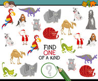 Finding one of a kind. Cartoon Illustration of Educational Activity of Finding One of a Kind for Preschool Children Royalty Free Stock Images