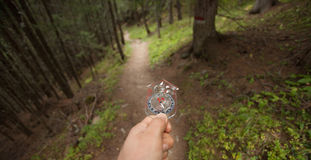 Finding the right position in the forest with and compass Royalty Free Stock Images