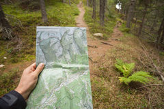 Finding the right position in the forest with a map Royalty Free Stock Photo