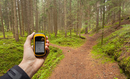 Finding the right position in the forest via gps Royalty Free Stock Photos