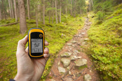 Finding the right position in the forest via gps Royalty Free Stock Image