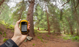 Finding the right position in the forest via gps ( blurred background) Royalty Free Stock Photos