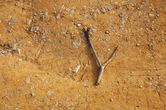 Finding water with a forked twig Royalty Free Stock Image
