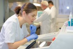 Free Findings In The Lab Stock Photos - 116223323