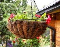 Fine appesa di vimini del canestro del fiore sulla foto Immagini Stock