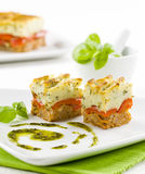 Fine appetizer Stock Photography