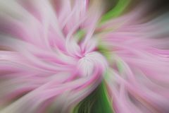Fine art abstract background. Green and pink pattern. Soft beautiful effect Stock Image