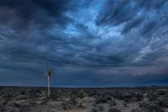 Fine art landscape op African desert with blue storm clouds stock photo
