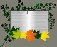 Fine Art open book Royalty Free Stock Photos