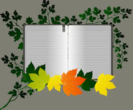 Fine Art open book. Editable  illustration of a open book Royalty Free Stock Photos