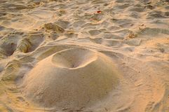 Fine beach sand structure in the summer sun Stock Photography