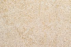 Fine beige cement Texture. Close up of a beige cement block revealing a relatively find texture Stock Photography