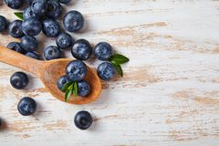 Fine blu della bacca su Fotografia Stock Libera da Diritti