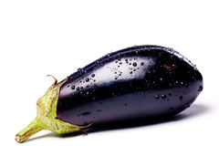 Fine blue eggplant Stock Photography