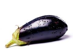 Fine blue eggplant Stock Photography