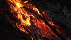 Fine bruciante del fuoco su archivi video