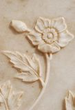 Fine Carves of Flower. Fine Flower Carves on the marble wall Stock Image