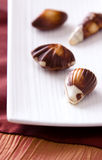 Fine Chocolates Royalty Free Stock Photography