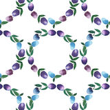 Fine circle of plums pattern watercolor Royalty Free Stock Images