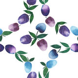 Fine circle of plums pattern watercolor hand sketch. Beautiful bright seamless pattern of rings of blue and purple plums watercolor hand sketch Stock Image