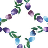 Fine circle of plums watercolor hand sketch. Beautiful bright seamless pattern of rings of blue and purple plums watercolor hand sketch Royalty Free Stock Photos