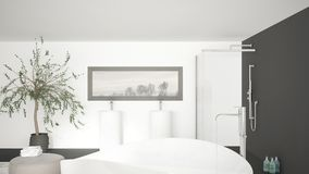 Grande doppio lavandino bianco del bagno moderno con lo specchio fotografia stock immagine di for Vasca da bagno classica