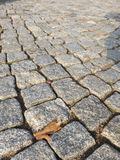 Fine cobblestone Royalty Free Stock Images