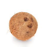 Fine coconut Stock Images