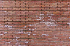 Fine constructed brickwall Stock Image